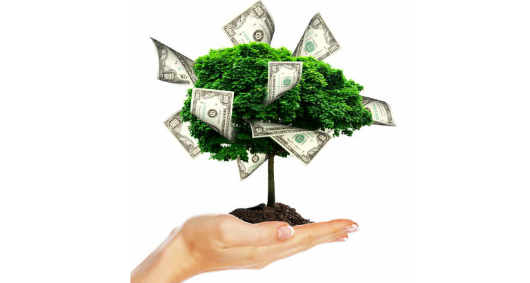 Here's Your Money Tree . . . You're Welcome